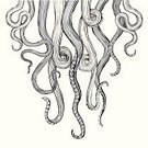 Octopus,Tentacle,Squid,Woodcut,Vector,Ilustration,Sea,Cutting,Style,Wood - Material,Monster,Rough,Animal