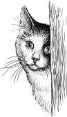 Domestic Cat,Animal Head,Drawing - Art Product,Sketch,Animal Nose,Short Hair,Mustache,Peeking,Cute,Kitten,Front View,Animal Ear,Fur,Pets,Shorthair Cat,Looking At View,Portrait,Isolated On White,Domestic Animals,Mixed-Breed Cat,Animal Eye