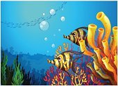 Sea,River,Gift,resource,Nature,Lake,Underwater,Vector,Yellow,Multi Colored,Deep,Animals Hunting,Carnivore,Image,Computer Graphic,Hell,Blue,Reef,Backgrounds,Fish,Condensation,Lifestyles,Pets,Animal,Leaf