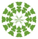 Kaleidoscope,Christmas,Flower,Circle,Deco,Floral Pattern,Art,Lantern,Vector,Pattern,Snowflake,Design,Sign,Art Deco,Star - Space,themes,Winter,Symbol,Green Color,Shape,Holiday,Computer Graphic,Decoration,Star Shape,Cold - Termperature,Design Element,Constellation,White Background,Color Image,dingbats,Light - Natural Phenomenon,Christmas Decoration,Decor,Marketing,No People,Snow,Ilustration,Season,Backgrounds,Lightweight,Vector Florals,accent,Holiday Symbols,Frost,Celebration,Illustrations And Vector Art,December,Clip Art,Christmas Lantern,Holidays And Celebrations,Christmas