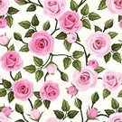 Rose - Flower,Retro Revival,Print,Old-fashioned,Vine,Pattern,Wallpaper Pattern,Pink Color,White Background,Beautiful,Flower,Flower Head,Victorian Style,Design Element,Plant,Textile,Repetition,Textured,Branch,Backgrounds,Backdrop,Ilustration,White,Blossom,Decoration,tea-rose,Style,Green Color,Seamless,Twig,Vector,Ornate,Bud,English Culture,Floral Pattern,Formal Garden,Design,Continuity,Nature,Leaf