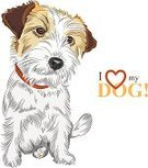 Dog,Terrier,Small,Humor,Cartoon,Cute,Puppy,Short Hair,Jack Russell Terrier,Fun,Young Animal,Serious,Mascot,Vector,Tail,Sketch,Brown,Red,White,Orange Color,Intelligence,Cheerful,Strength,Ilustration,Spotted,Wire-haired,Animal,Pets,Black Color,Partnership,Friendship,Purebred Dog