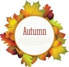 Wreath,Decoration,Bush,Floral Pattern,Autumn,Flower,Tree,Ilustration,Backgrounds,autumn leaves,Beauty In Nature,Multi Colored,Acorn,Frame,Red,Season,Picture Frame,Ornate,Color Image,Placard,Nature,Beautiful,September,Greeting Card,Leaf,Elm Tree,Vector,Yellow,Computer Graphic,Maple Tree,Brown
