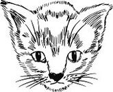 Looking,Cute,Cub,Animal,Vector,Ilustration,Doodle,Feline,pedigreed,Playful,Purebred Dog,Pets,Domestic Cat,Carnivore,lovable,Small,Kitten