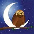 Owl,Moon,Night,Nature,Drawing - Art Product,Branch,Horror,Tranquil Scene,Spooky,Forest,Sky,Moonlight,Vector,Crescent,Halloween,Tree,Bird,Backgrounds,Ilustration