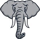 Elephant,Mascot,Animal Head,Vector,Cartoon,Animal Trunk,Anger,Front View,Displeased,Furious,Pachyderm,Tusk,Sport,Aggression,Strength,One Animal,Outline,Power,Bull Elephant,Actions,Sports Symbols/Metaphors,Gray,Staring,Wild Animals,Toughness,Isolated On White,Animals And Pets,Sports And Fitness