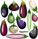 Ilustration,Exoticism,Abstract,Set,Vector,Isolated,Design Element,Vegetable,Cooking,Symbol,Food,Eggplant