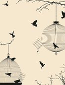 Bird,Computer Graphic,Wing,Freedom,No People,Old-fashioned,Group Of Animals,Metal,Collection,Pets,Obsolete,Shape,Concepts,Cage,Birdcage,Silhouette,Single Object,Prison,Ilustration,Captivity,Design,Group of Objects,Enclosure,Feather,Escape,Wire,Backgrounds,Trapped,Hanging,Decoration,Cute