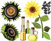 Cooking Oil,Symbol,Vector,Exoticism,Cooking,Set,Abstract,Food,Sunflower,Olive Oil,Bottle,Sunflower Seed,Ilustration
