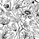 Computer Graphics,Elegance,Decor,Nature,Ink,Plant,Pattern,Leaf,Summer,Tulip,Decoration,Curve,Backgrounds,Computer Graphic,Outline,Ornate,Abstract,Illustration,No People,Vector,chrisanthemum