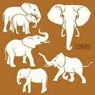 Large,Series,Image,Large,Symbol,Variation,Nature,Animal Wildlife,Africa,Side View,Animal,Walking,Standing,Tusk,Mammal,Elephant,African Elephant,Backgrounds,Zoo,Outline,Illustration,Part of a Series,Vector,Collection,Background,Trumpeting