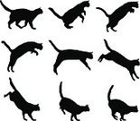 Domestic Cat,Joy,Ilustration,Kitten,Animals In The Wild,Silhouette,Jumping,Domestic Animals,Vector,Animal