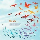 Bird,Flying,Seagull,Pattern,Flock Of Birds,Rainbow,Autumn,Raven,Silhouette,Freedom,Abstract,Armed Forces,Outline,Frame,Black Color,Backgrounds,Illustrator,Greeting Card,Season,Shape,Decoration,Drawing - Art Product,Sky,Circle,Collection,Ilustration,Creativity,Cloud - Sky,Decor,Curve,Contour Drawing,Colors,Design Element,Cloudscape,Image,Action,Vector,Backdrop,Winter,Multi Colored,Color Image,Nature,Animal,Computer Graphic,Drawing - Activity,Outdoors,Animals In The Wild