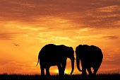 Africa,Sunset,Wildlife,Animals In The Wild,Travel,Ilustration,Animal,Silhouette,Safari Animals,Tourism,Landscape,Forest,Tree,Savannah,Nature,African Culture,Sun