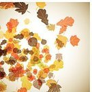 Leaf,Nature,Season,Vector,Ilustration,Ornate,Autumn,Backgrounds,Multi Colored,Decoration,Abstract