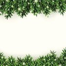 Wreath,Christmas,Pine Tree,Backgrounds,Holiday,Vacations,Frame,Needle,Happiness,Tree,Twig,Fir Tree,Copy Space,Greeting,Poster,New Year's Day,Celebration,Winter,Branch,Ilustration,Snow,Eps10,Nature,mistle,Decor,Ornate,December,Humor,Green Color,Bright,firtree,Vector,Decoration,Season,New Year,White,Snowflake