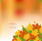 Ilustration,Red,Ornate,Colors,Backgrounds,Autumn