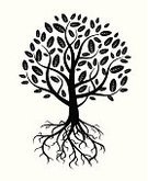Tree,Root,Vector,Symbol,Leaf,Drawing - Art Product,Abstract,Springtime,Pattern,Design,Land,Nature,Image,Single Object,Landscape,Branch,Invitation,Formal Garden,Sign,Black Color,Ilustration,Posing,Painted Image,Banner,Environment,Summer,Isolated,Decoration,White,Rectangle,Square,Design Element