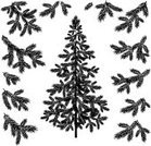 Black And White,Pine Tree,Christmas Tree,Needle,Christmas,Computer Graphic,Fir Tree,Tree,Branch,Cut Out,Spruce Tree,Silhouette,Nature,Vector,Tree Trunk,Coniferous Tree,Plant,Woodland,Botany,Twig,christmastree,Growth,Forest,Outline,White,black-and-white,Single Object,Stem,Black Color,firtree,Evergreen Tree,Christmas Decoration,Figurine,Isolated,fir-tree