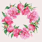 Romance,Wedding,Peony,Flower Head,Elegance,Invitation,Summer,Greeting,Bouquet,Backgrounds,Nature,Pink Color
