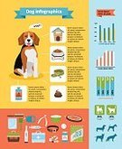 Growth,Vector,Infographic,Dog,Pets,Characters,Friendship,Brown,Training Class,Puppy,Sports Training,Humor,Nature,Ilustration,premium,Design Element,Healthcare And Medicine,Healthy Eating,Cute,Computer Icon,Cartoon,Healthy Lifestyle,Award,template,Fun,Store,Percentage Sign,Part Of,Data,Care,Home Interior,Chart,Animal,Group Of People,Space,Design,Sitting,Symbol