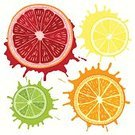 Summer,Citrus Fruit,Acid,Ilustration,Orange Color,citric,Plant,Green Color,Fruit,Grapefruit,Freshness,Tart,Healthy Lifestyle,Symbol,Remote,Multi Colored,Nature,Tangerine,Tropical Climate,Drawing - Art Product,Lifestyles,Dieting,Juicy,Sweet Food,Vector,Lime,Tasting,Shiny,Vitamin Pill,Breakfast,Organic,Curve,Pulp,Food,Cross Section,Circle,Backgrounds,Yellow,hand drawn,Vibrant Color,Juice,Lemon,Vitality,Ingredient,Art,Red,Heat - Temperature,Dessert,Slice