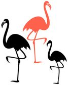 Flamingo,Exoticism,Isolated,Design Element,Silhouette,Set,Ilustration,Bird,Vector,Animal,Wildlife,Abstract