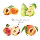 Watercolor Painting,Food,Apple - Fruit,Refreshment,Healthy Lifestyle,Ilustration,Design,Summer,Drawing - Art Product,Color Image,Juice,Pear,Freshness,Fruit,Leaf,Painted Image,Vitamin Pill,Sweet Food,Creativity,Sketch,Backgrounds,Apricot,Peach,Set,Multi Colored,Ripe,Autumn,Dieting,Dessert,Gourmet,Nature,Organic