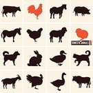 Chicken - Bird,Silhouette,Duck,Goose,Cow,Animal,Bull - Animal,Barn,Animal Head,Domestic Cat,Dog,Agriculture,Turkey - Bird,Livestock,Computer Icon,Pig,Symbol,Lamb,Goat,Vector,Donkey,Collection,Sign,Isolated,Veterinary Medicine,Sheep,Meat,Rooster,Set,Cockerel,Horse,Hen,Food,Bird,Rabbit - Animal,Black Color,Restaurant,Baby Chicken,Rural Scene,Ox,Domestic Animals,Ewe,Farm,Poultry,Pets,Population Explosion,Shape,Cattle