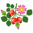 Symbol,Abstract,Exoticism,Isolated,Design Element,Set,Ilustration,Vector,Berry,Flower,Plant,Branch,Petal,Rose - Flower