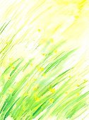 Watercolor Painting,Nature,Springtime,Flower,Plant,Green Color,Nature,Meadow,Arts And Entertainment,Paper,Plants,Spring,Grass,Arts Backgrounds,Painted Image,Color Image,Backgrounds,Yellow