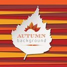 Autumn,Leaf,Ilustration,Vector,Abstract,Arranging,Computer Graphic,Backdrop,Season,Backgrounds,Nature