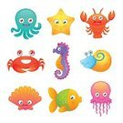 Animal,Octopus,Set,Collection,Computer Icon,Ornate,Drinking Water,Jellyfish,Symbol,Crab,Design Element,Wildlife,Vector,Aquarium,Isolated,Design,Animal Shell,Insignia,Single Object,Beach,Underwater,Horse,Life,Snail,Starfish,Lobster,Baby,Cartoon,Cute,Ilustration,Sea Horse,Multi Colored,Concepts,Fish,Sea,Star Shape