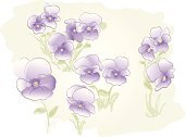 Flower,Violet,Watercolor Paints,Watercolor Painting,Pansy,Purple,Floral Pattern,Backgrounds,Paint,Pattern,Sketch,Vector,Softness,Flower Bed,Flower Head,Pastel Colored,Brush Stroke,Leaf,Design,Springtime,Meadow,Blossom,Tranquil Scene,Summer,Nature,Beauty In Nature,Painterly Effect,Decoration,flower design,Beauty,Vector Florals,Nature Backgrounds,Illustrations And Vector Art,Nature,Flowers