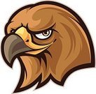 Hawk - Bird,Animal,Computer Graphic,Sign,Isolated On White,Team Mascot,Hawk Head,No Gradients,Courage,Brown,Isolated,School Mascot,Ilustration,Anger,couragous,Solid Colors,Bird,Mascot,Vector,Characters,Cartoon,Clip Art