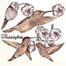 Drawing - Art Product,Hummingbird,Wing,Flying,Old,Wallpaper,Isolated,Part Of,Decor,Typing,Model Kit,Animal Hand,Nature,Set,Sitting,Intricacy,Retro Revival,Antique,Ilustration,Style,Old-fashioned,Shape,Drawing - Activity,Ornate,Beautiful,Creativity,Decoration,Invitation,Design,Celebration,Collection,Computer Graphic,Vector,Elegance,Nostalgia,Animal,Art,Group of Objects,Bird,Posing,Fern,Variation,Silhouette,Cute,Fly