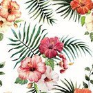Hibiscus,Pattern,Tropical Climate,Adulation,Vine,Orchid,Leaf,Summer,Decoration,Flower Head,Bird of Paradise,Tropical Rainforest,Backgrounds,Nature,Freshness,Multi Colored,Plant,Pink Color