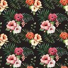 Pattern,Tropical Climate,Vine,Freshness,Nature,Backgrounds,Tropical Rainforest,Bird of Paradise,Multi Colored,Hibiscus,Flower Head,Decoration,Adulation,Orchid,Leaf,Pink Color,Summer,Plant