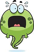 Toad,Terrified,Fear,Clip Art,Cartoon,Vector,Amphibian,Animal,Frog,Ilustration,Screaming,Sweat,Tadpole,Shouting,Porwigle,larval,pollywog,Computer Graphic