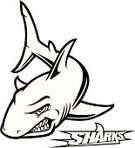 Shark,Mascot,Fish,Cartoon,Vector,Insignia,Animal Fin,Black And White,Aggression,Symbol,Ilustration,Animal Teeth,Sport Symbol,Swimming Animal,Saltwater Fish,Black And White Instant Print,Stalking,Dorsal Fin,Pectoral Fin,Stem,Tail Fin,Power,Confrontation,Illustrations And Vector Art,Power,Sea Life,Animals And Pets,Staring,Vector Cartoons,bloodthirsty,Concepts And Ideas