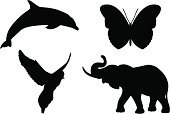 Dolphin,Elephant,Silhouette,Symbol,Animal,Butterfly - Insect,Dove - Bird,Bird,Computer Icon,Vector,Outline,Black Color,Computer Graphic,Animal Themes,Drawing - Art Product,Shape,Simplicity,Group of Objects,Ilustration,White Background,Wing,Art,Isolated On White,Wildlife,Group Of Animals,Set,Digitally Generated Image,Icon Set,Animals And Pets,Illustrations And Vector Art