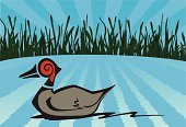 Duck,Marsh,Hunting,Pond,Wing,Ripple,Beak,Swimming Animal,Red,Wood - Material,Swirl,Plant,Sports And Fitness,Birds,Illustrations And Vector Art,Individual Sports,Vector Cartoons,Animals And Pets,Sky,Sunbeam,Tail