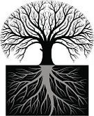 Family Tree,Tree,Root,Silhouette,taproot,Growth,Symbol,Tangled,Cultivated,Dirt,Slice,Botany,Black And White,Nature,Environment