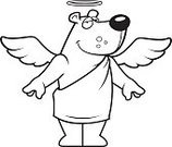 Ilustration,Spirituality,Smiling,Vector,Wing,Happiness,Cheerful,Animal,Bear,Cartoon,Halo,Angel