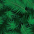 Pattern,Tropical Climate,Seamless,Palm Tree,Aloha,Leaf,Green Color,Hawaii Islands,Tropical Rainforest,Floral Pattern,Design Element,Computer Graphic,Textile,Wallpaper Pattern,Idyllic,Formal Garden,Nature,Tropical Flower,Flower,Hibiscus,Vector,Springtime,Safari,Uncultivated,Jungle Leaf,Repetition,Black Color,Sub-tropical Climate,Jungle Floral,Front or Back Yard,Ilustration,Fashion,Summer,Multi Colored