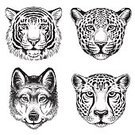 Candid,Etching,Wolf,Animals In The Wild,Sketch,Wildlife,Tiger,Undomesticated Cat,Dog,Drawing - Art Product,Ilustration,Safari Animals,Danger,Wildlife Reserve,Zoo,Pen And Ink,Vector,Animal Head,Mythology,Tattoo,Siberian Tiger,Striped,Leopard,Howling,Silhouette,Cheetah,Animal,Mammal,Fantasy,Jaguar,Werewolf,Feline,Africa,Sled Dog,Canine,Spotted,Portrait,Fine Art Portrait,hand drawn,Anthropomorphic Face,Nature,Carnivore,Bengal Tiger
