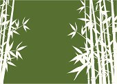 Bamboo,Bamboo,Vector,Backgrounds,Ilustration,Leaf,Tree,Bush,Branch,Plant,Backdrop,Nature,Growth,Image,Decoration,Design Element,Vector Ornaments,Vector Florals,Vector Backgrounds,Illustrations And Vector Art