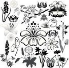 Orchid,Lily,Hibiscus,Chrysanthemum,Tropical Flower,Silhouette,Tulip,Floral Pattern,Carnation,Cornflower,Ilustration,Bluebell,Apple Blossom,Lupine,Herb,Art,Decoration,Aster,Black And White,Flower Bed,Branch,Plant,Leaf,Chamomile,Botany,Apple Tree,Scroll Shape,Foliate Pattern,Design Element,Swirl,Nature,Curled Up,Ornate,Natural Pattern,Set,Chamomile Plant