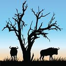 Wildebeest,Dusk,Grass,Vector,Morning,Thorn Tree,Sunrise - Dawn,Animals In The Wild,big five,Sunset,birdlife,Sky,Landscape,Safari Animals,South Africa,Wilderness Area,Postcard,Antelope,dead tree,Mammal,Acacia Tree,Idyllic,african animals,Silhouette,Twilight,Bird,Blank,Rough,Savannah,Bush,Wildlife Reserve,Plain,Bush Land,Ilustration,Tree,Scenics,African Game,Wildlife,Safari,African Buffalo,Beauty In Nature,Indigenous Culture,Candid,Hunting,Africa