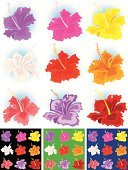 Hibiscus,Tropical Climate,Flower Head,Flower,Yellow,Vector,Summer,Blossom,Red,Springtime,White,Ilustration,Purple,Design,Orange Color,Flowers,Vector Florals,Nature,Design Element,No People,Illustrations And Vector Art